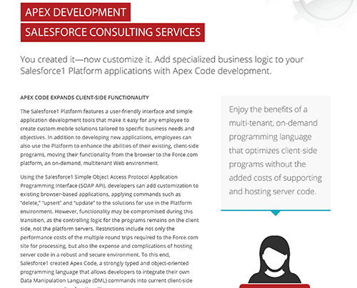 Salesforce Apex Consulting Services for Force com Platform
